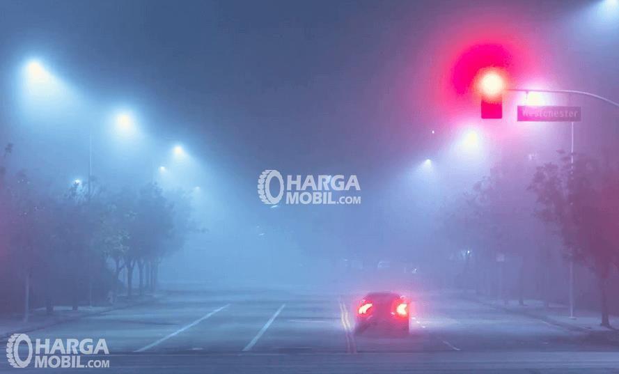 Gambar ini menunjukkan sebuah Mobil tampak belakang sedang berjalan di malam hari dengan kabut di sekitarnya