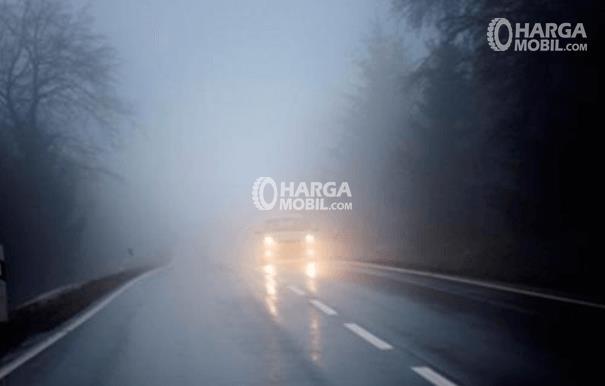 Gambar ini menunjukkan sebuah Mobil tampak depan dengan lampu menyala sedang berjalan di jalanan yang berkabut tebal