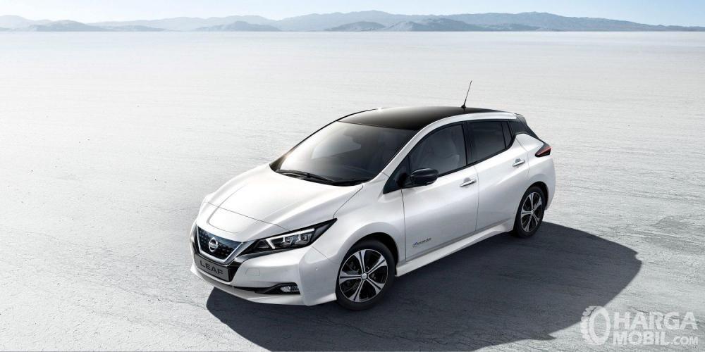Nissan LEAF 2019 Dengan Floating Roof Keren