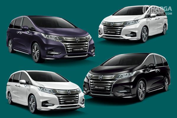 Gambar ini menunjukkan 4 mobil Honda Odyssey dengan warna berbeda