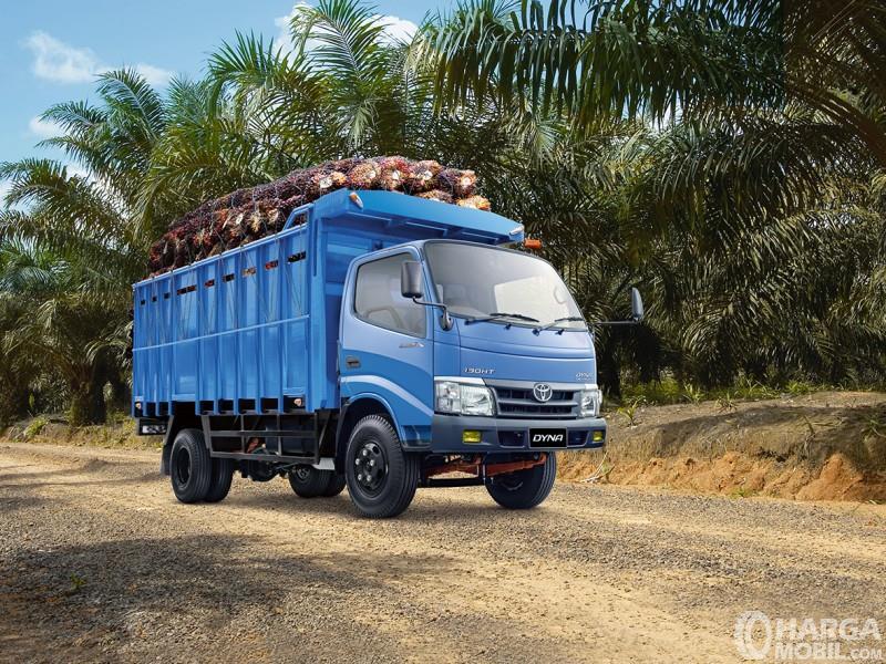 Toyota Dyna untuk angkutan di perkebunan sawit