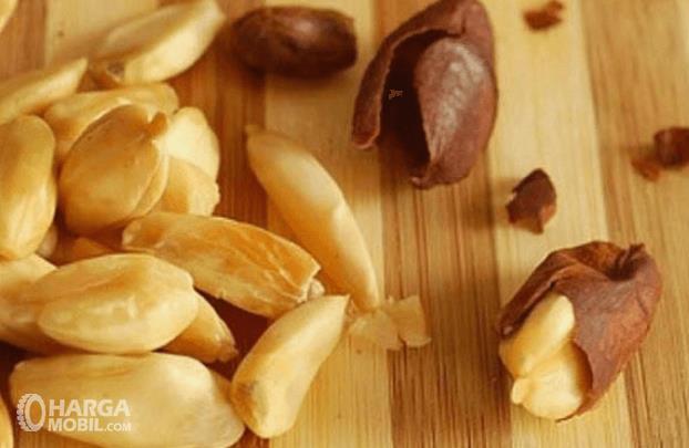 Gambar ini menunjukkan kacang yang sudah dikelupas kulitnya