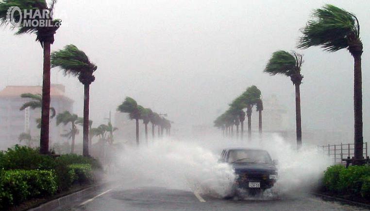 Gambar ini menunjukkan mobil melaju dalam kondisi angin kencang dan melewati genangan air