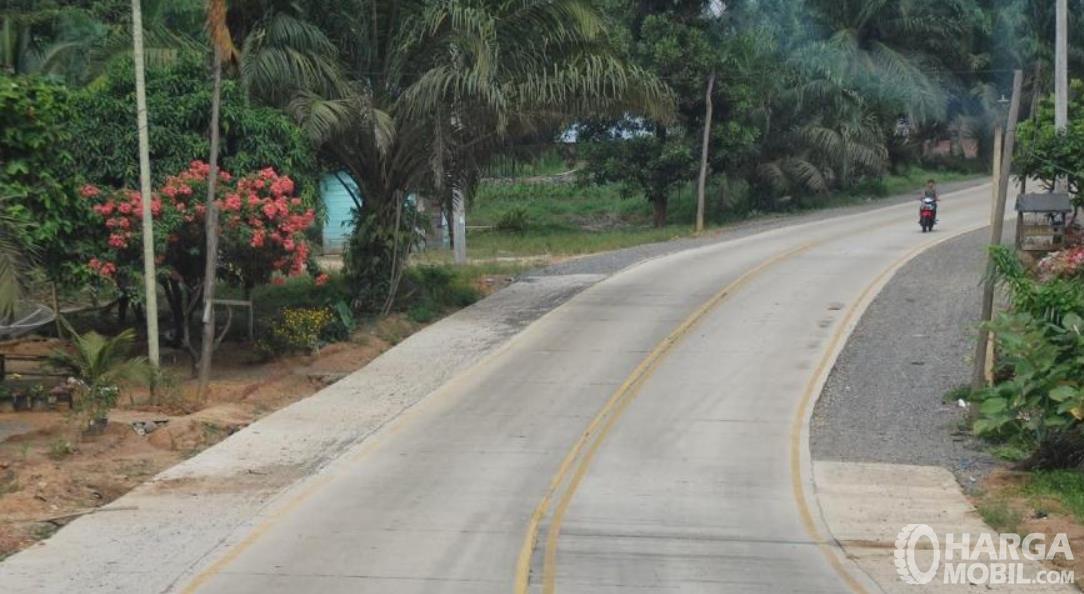 Gambar ini menunjukkan jalanan beton di pedesaan